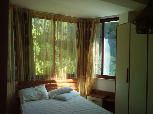 Villa con giardino stile Inglese. - Parco dei Salici - Ev