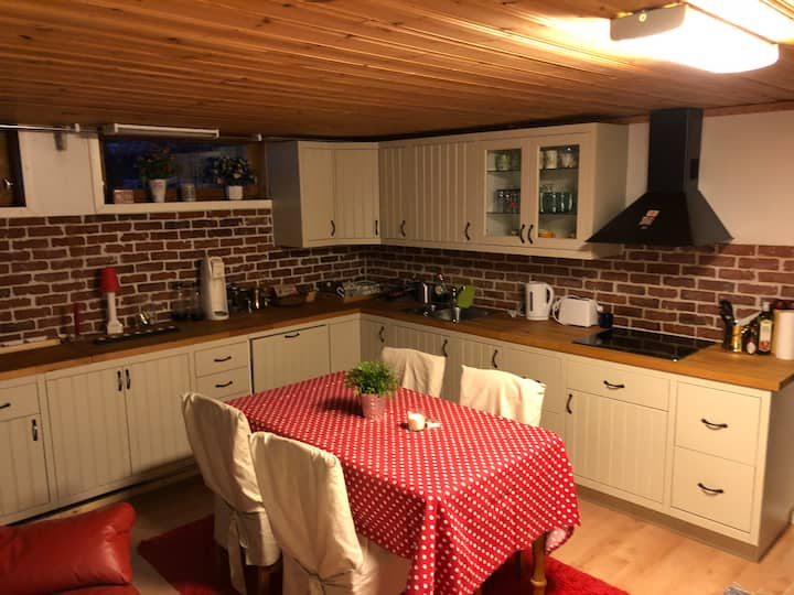 Apartment in basement. Kitchen, bedroom, sauna.