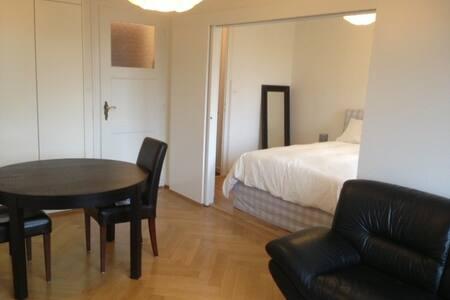 Beautiful 2 rooms apt in Geneva - Geneva - Apartment