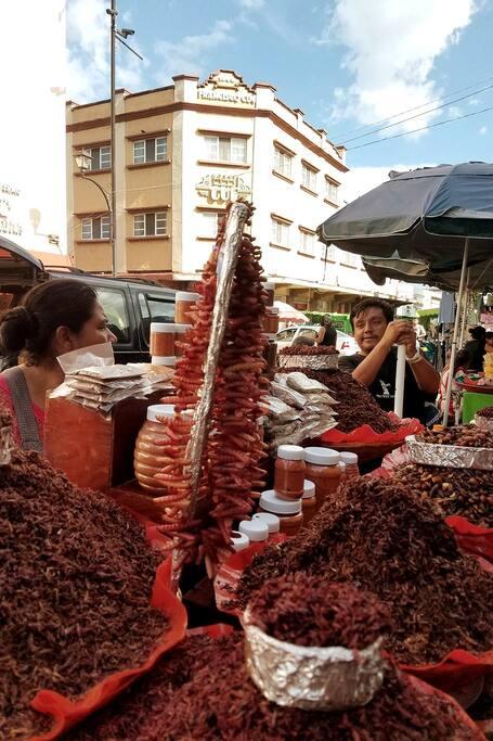 Street Exotic Food of Oaxaca