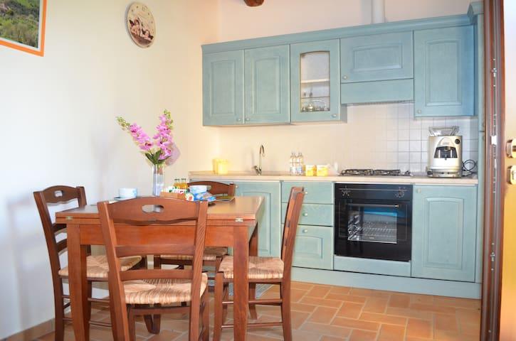Appartamento Trebbiano  - Montebuono - Apartment