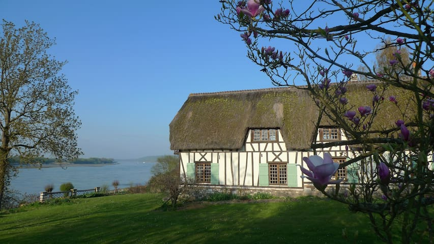 Thatched cottage - Normandy - Seine - Vieux-Port - House