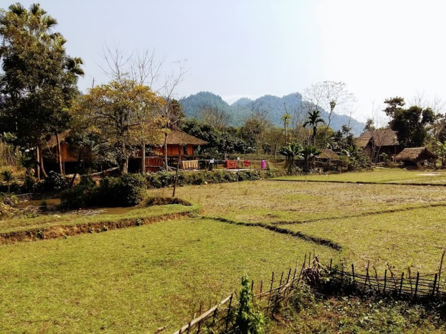 Ha Giang homestay and Local tour guide
