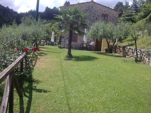 Casa in Pietra fine 800 0ttimamente - Castelbellino - Гестхаус