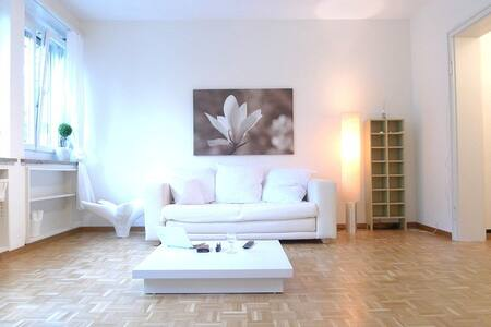 Beautiful central flat with 2 rooms - Appartement