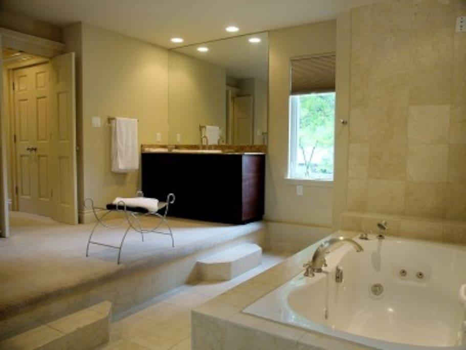 Master bath, jet Jacuzzi tub.