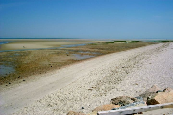 Charming Cottage: Walk to Beach - Eastham - House