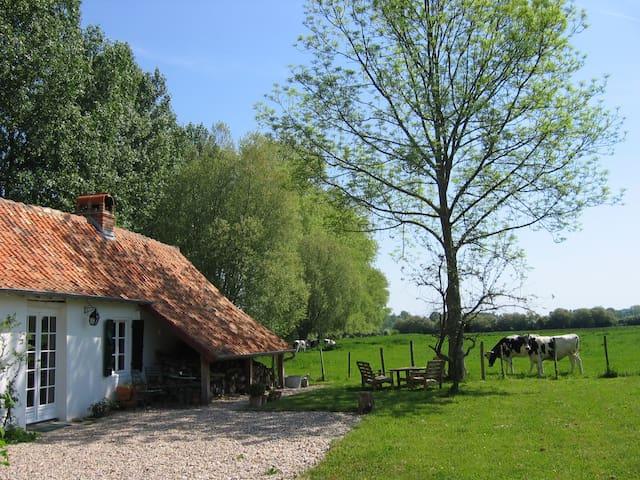 Gîte de charme au bord de l'authie - Tigny-Noyelle - Dům