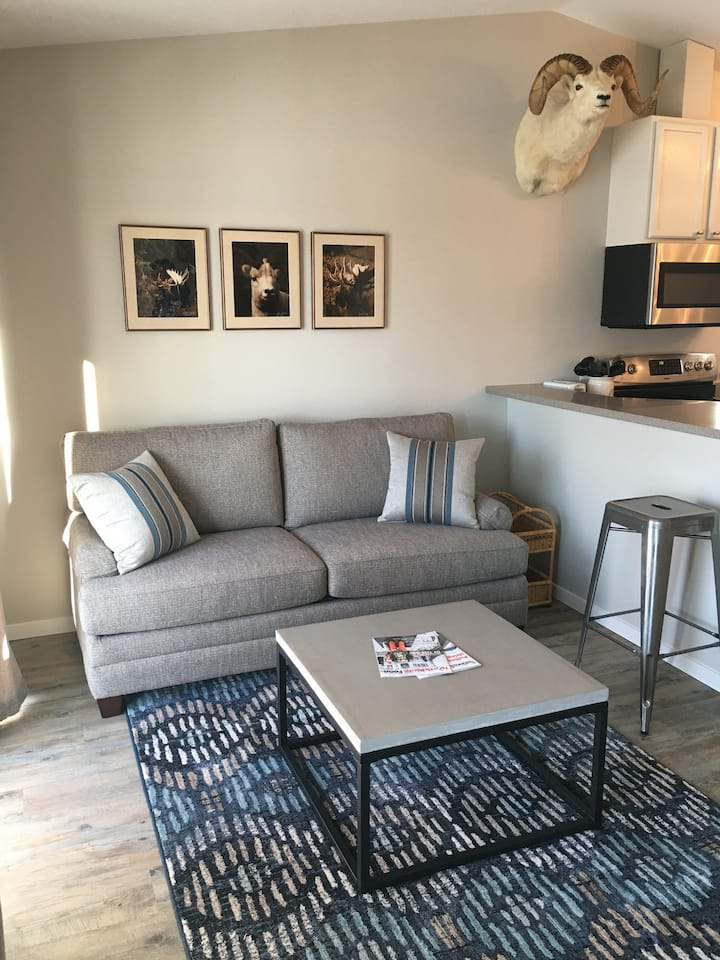 In Town, modern, newly renovated apartment