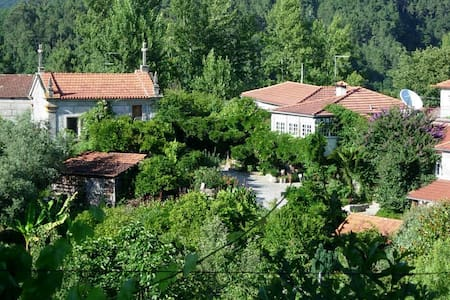 QUINTA DE RIBAS Chbres d'hotes   - Amarante Municipality - Bed & Breakfast