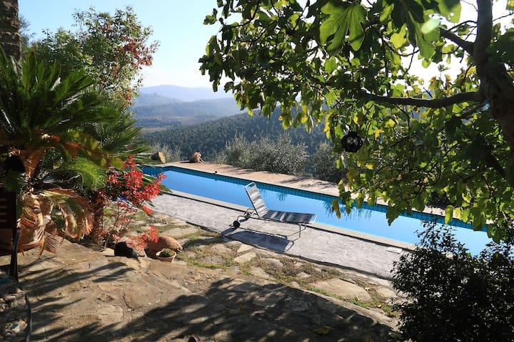 La casetta nel bosco studios - Perugia - Villa