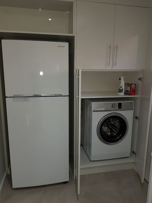 Washing Machine and Fridge