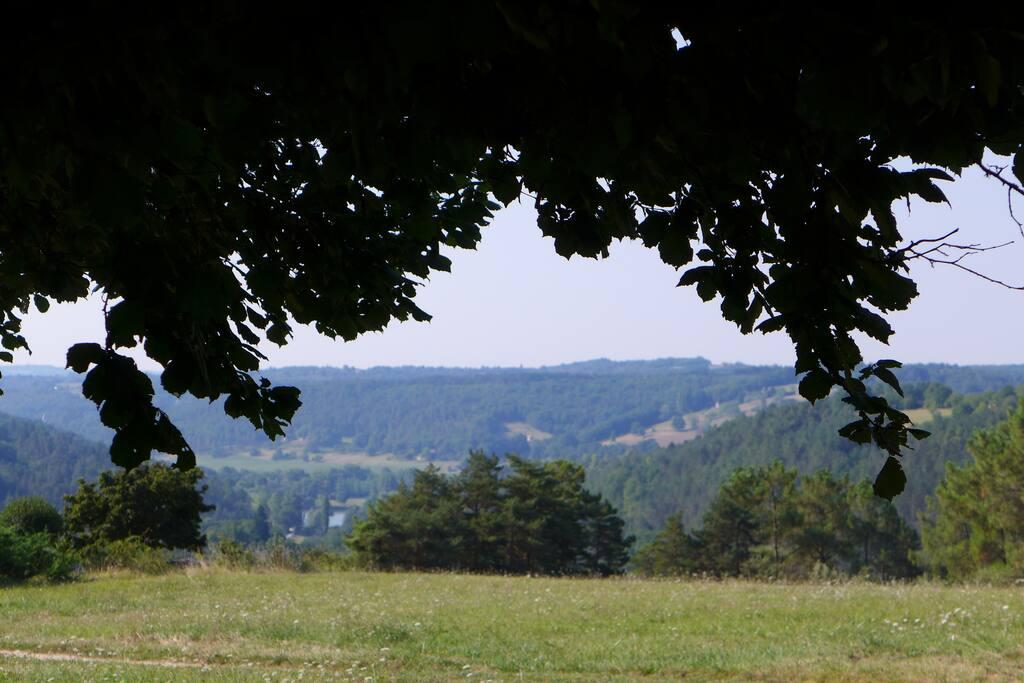 The Lane leading to La Bourelie