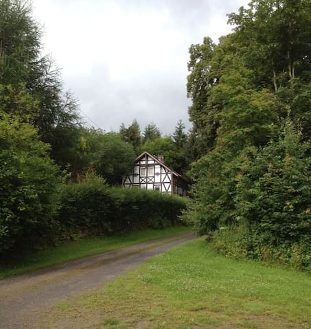 Bed & Breakfast 'Im Wald' - Dassel - Szoba reggelivel