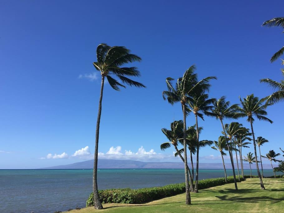 Ocean breezes and unforgettable views