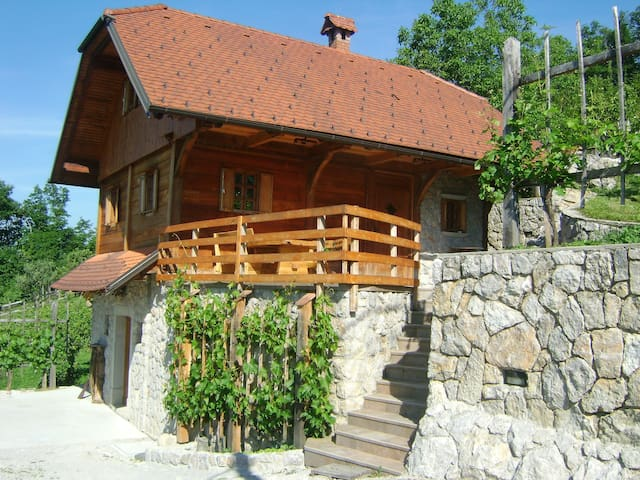 "The vineyard cottage ""Zidanca med Vinogradi"""