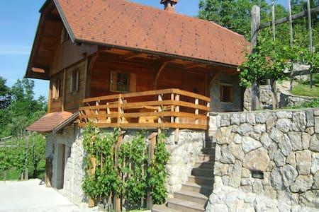 """The vineyard cottage """"Zidanca med Vinogradi"""""""