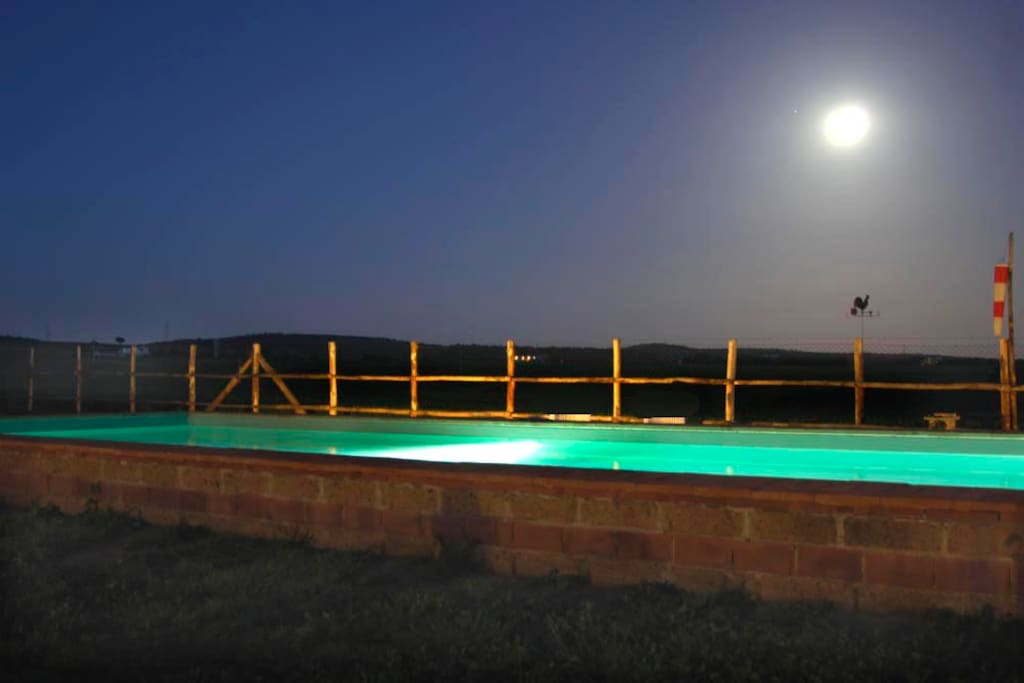 swimming pool and the moon