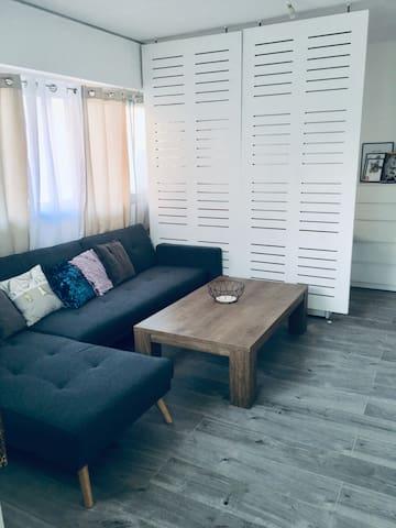 Appartement French Riviera Proche Centre Cannes