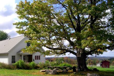 Farmstay at Greenwood Hill Farm (A) - Andover - Bed & Breakfast