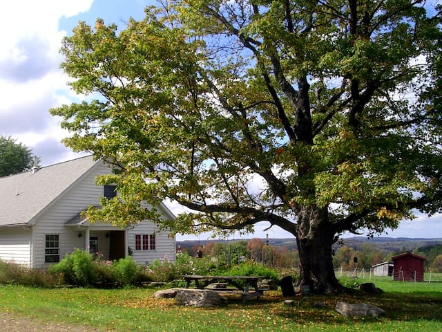 Farmstay at Greenwood Hill Farm (C) - Andover - Bed & Breakfast