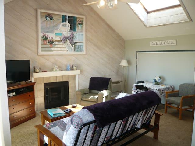 Living area w/ Queen size Murphy Bed , Queen size Futon Sofa Sleeper