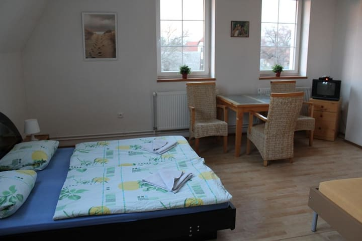 Apartmens near Prague - Vyžlovka - Bed & Breakfast