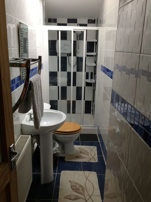 Shower Room, electric shower