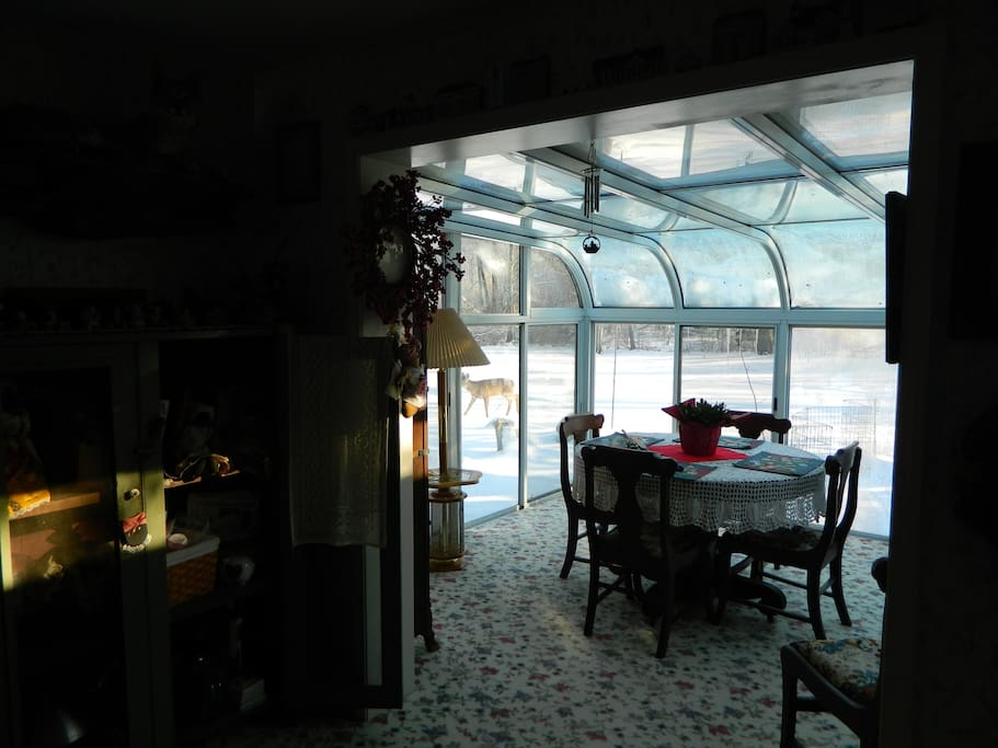 Sunroom off of dining room, with view of backyard.