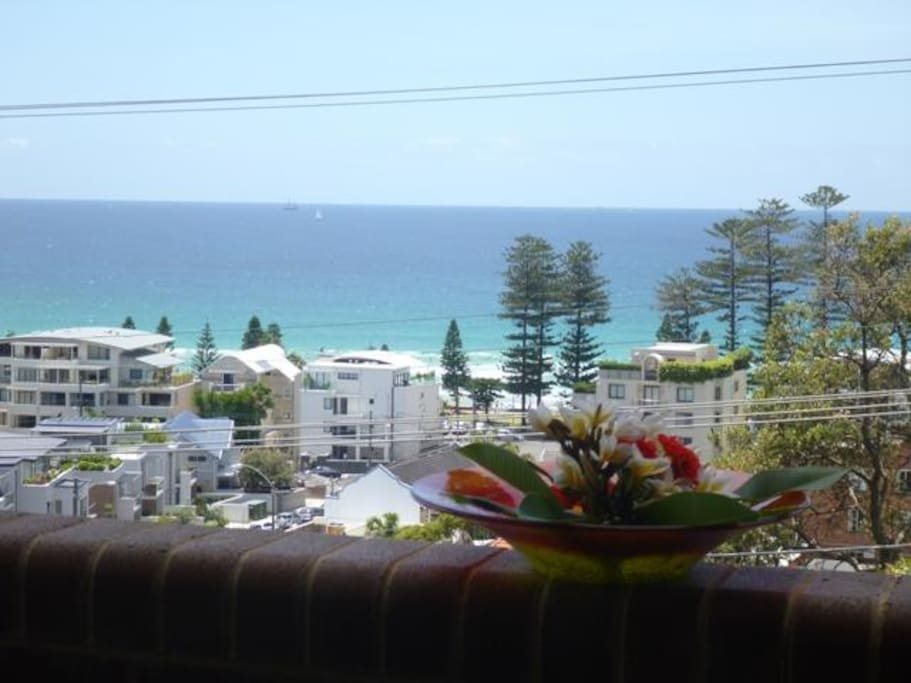 Actual view from balcony at  Manly Beach View Bed and Breakfast