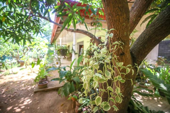 Neverbeen to Kasappa's Home stay | DBL Room 1