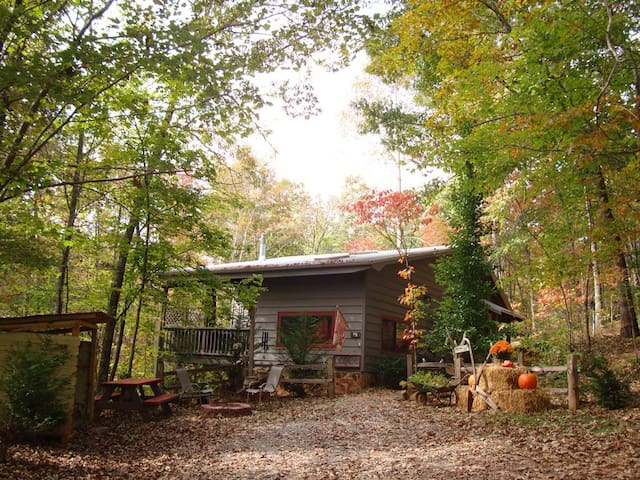 Hiking & Waterfalls! Screened Porch - Blue Ridge
