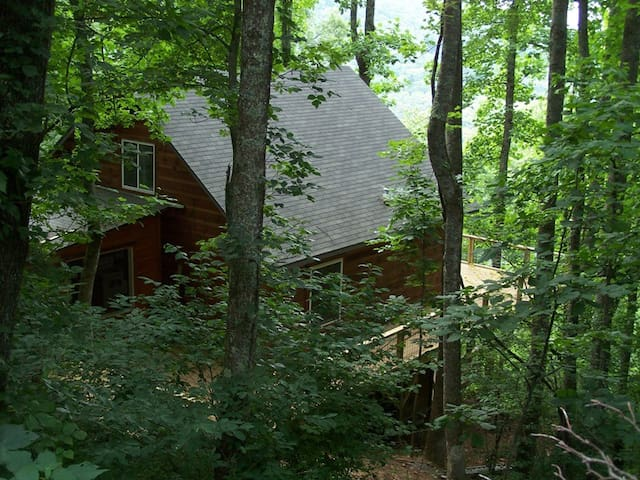 """Stay in a """"Treehouse"""" 