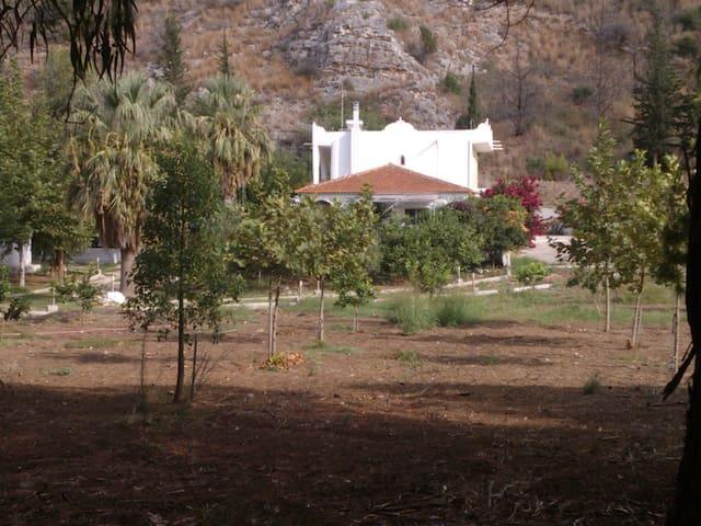 """Villa """"DUNES"""" Kalogria,Araxos,Patra - Kalogria"""