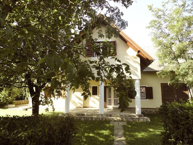 Wunderschönes Haus mitten in den Weinbergen - Balatonederics - House