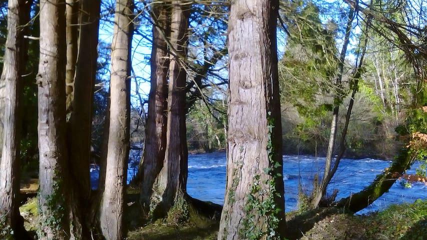 River Walk Dromahair