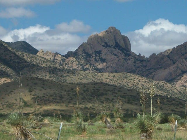 Cochise Stronghold Forest Get-Away  - Cochise County - Haus