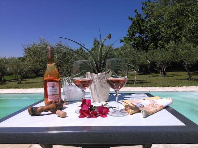 L'heure de l'apéritif/Time for a glass of  local rosé wine