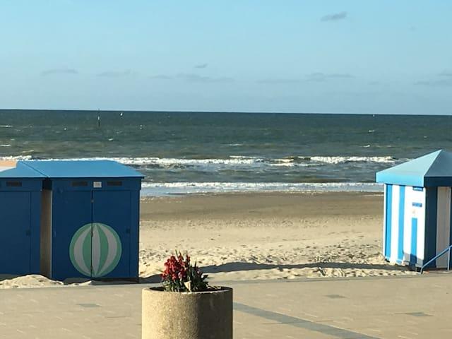 Beau plein pied bord de mer