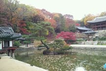 Fall of Secret Garden in Changdeokgung Palace