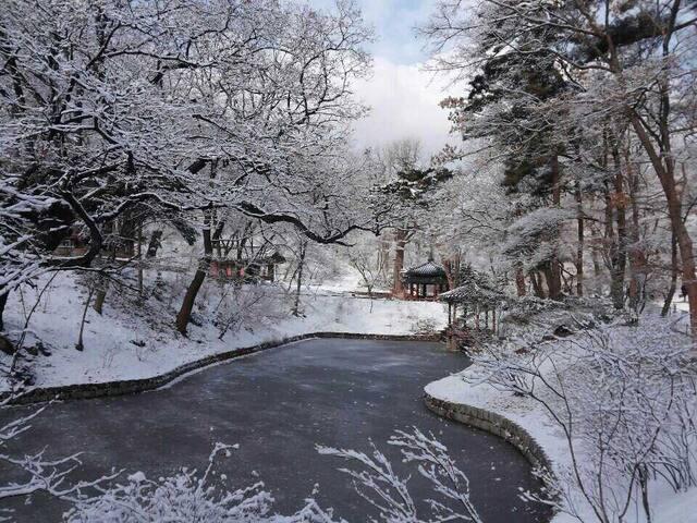 Winter of Secret Garden in Changdeokgung Palace
