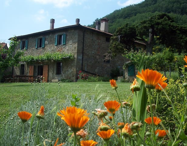 Charming spacious Tuscan farmhouse 12, dogfriendly - Londa - Villa