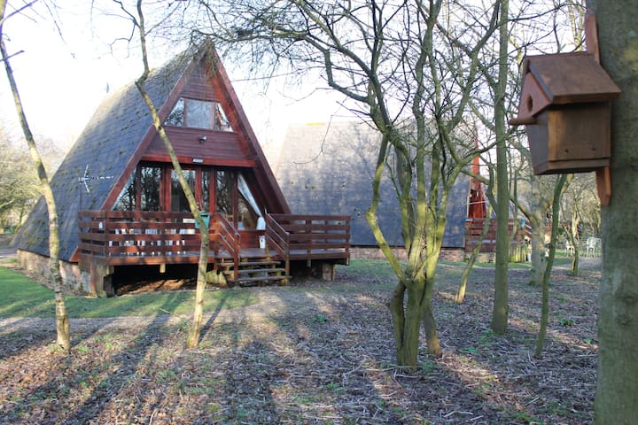 Cute wooden lodge by Grafham Water - Grafham - Dom
