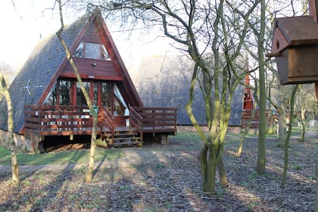 Cute wooden lodge by Grafham Water - Grafham - Rumah