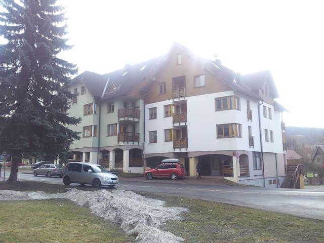 Apartment close to ski slopes - Rokytnice nad Jizerou - Appartamento