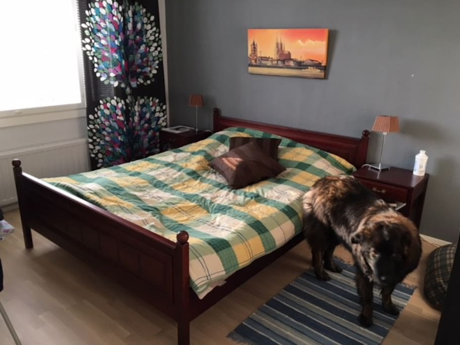 Master bedroom. Bed for two. The four legged not included :)