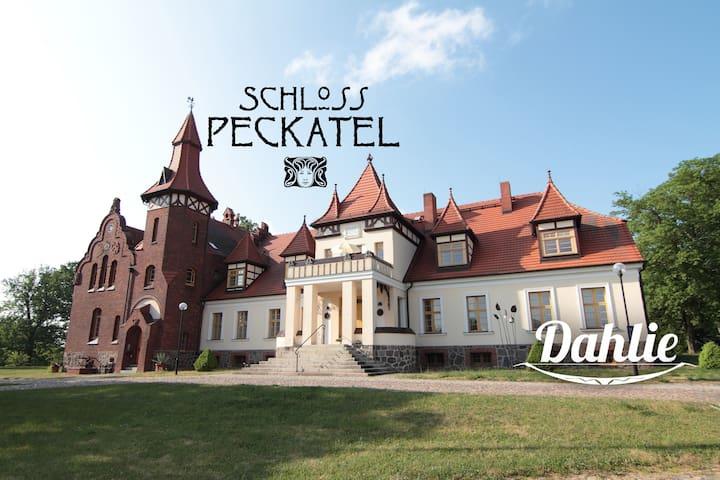 Ferien im Schloss Peckatel am Müritz-Nationalpark - Klein Vielen - Condominium
