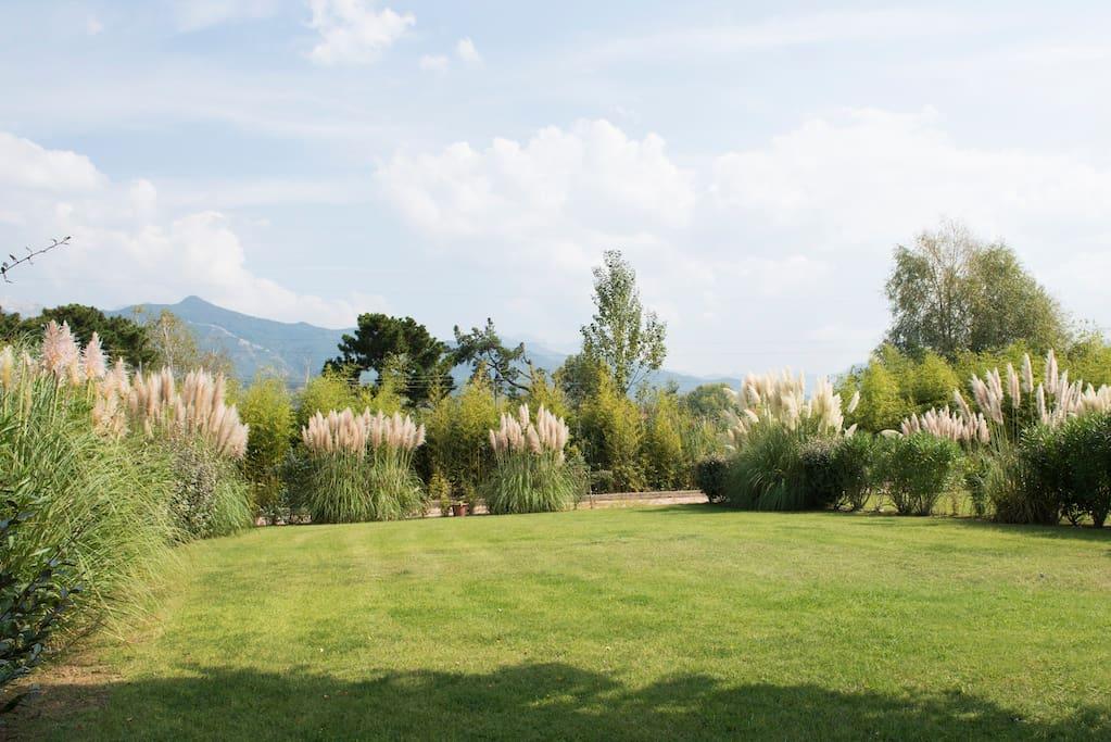 splendido giardino con vista sulle Apuane