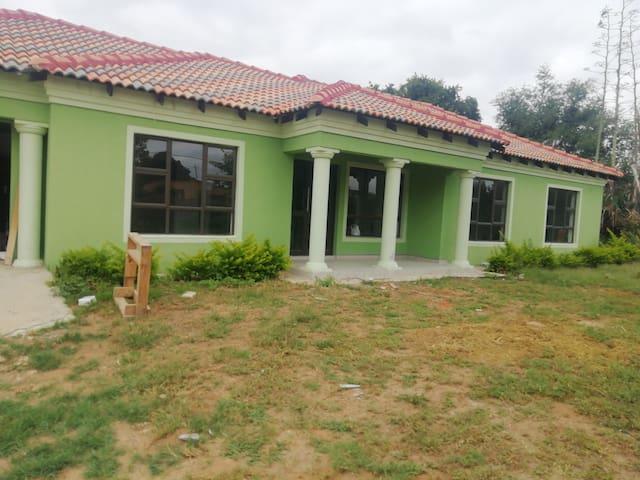Green big house