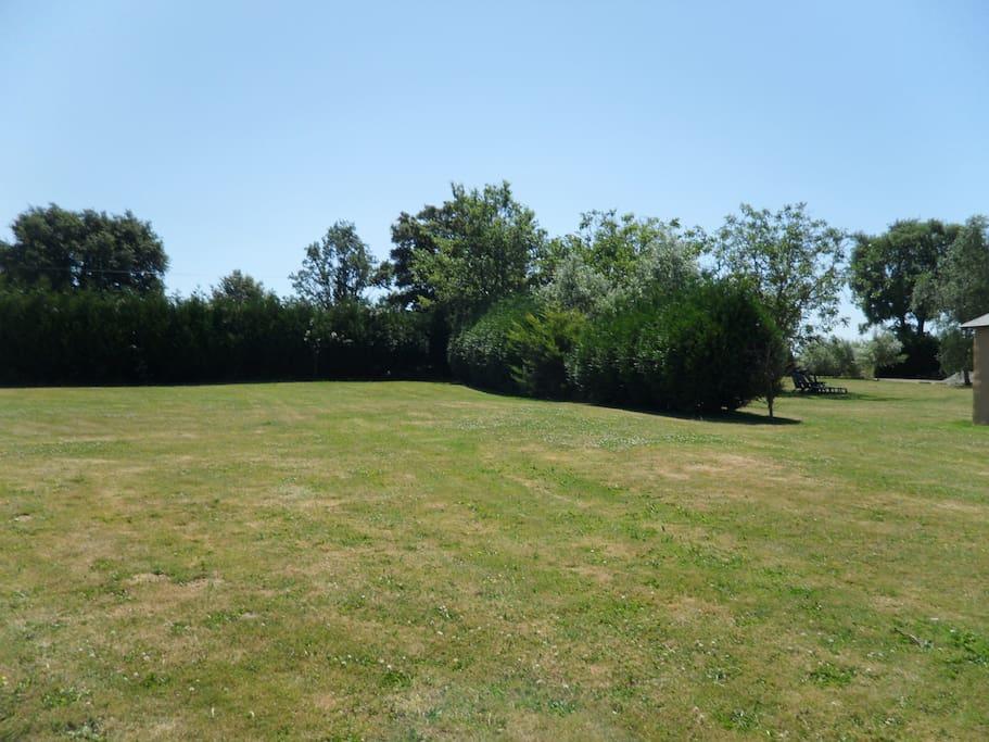 Extra Garden area for Ball Games